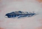 Blue Jay Feather on SaturdaySoul.com