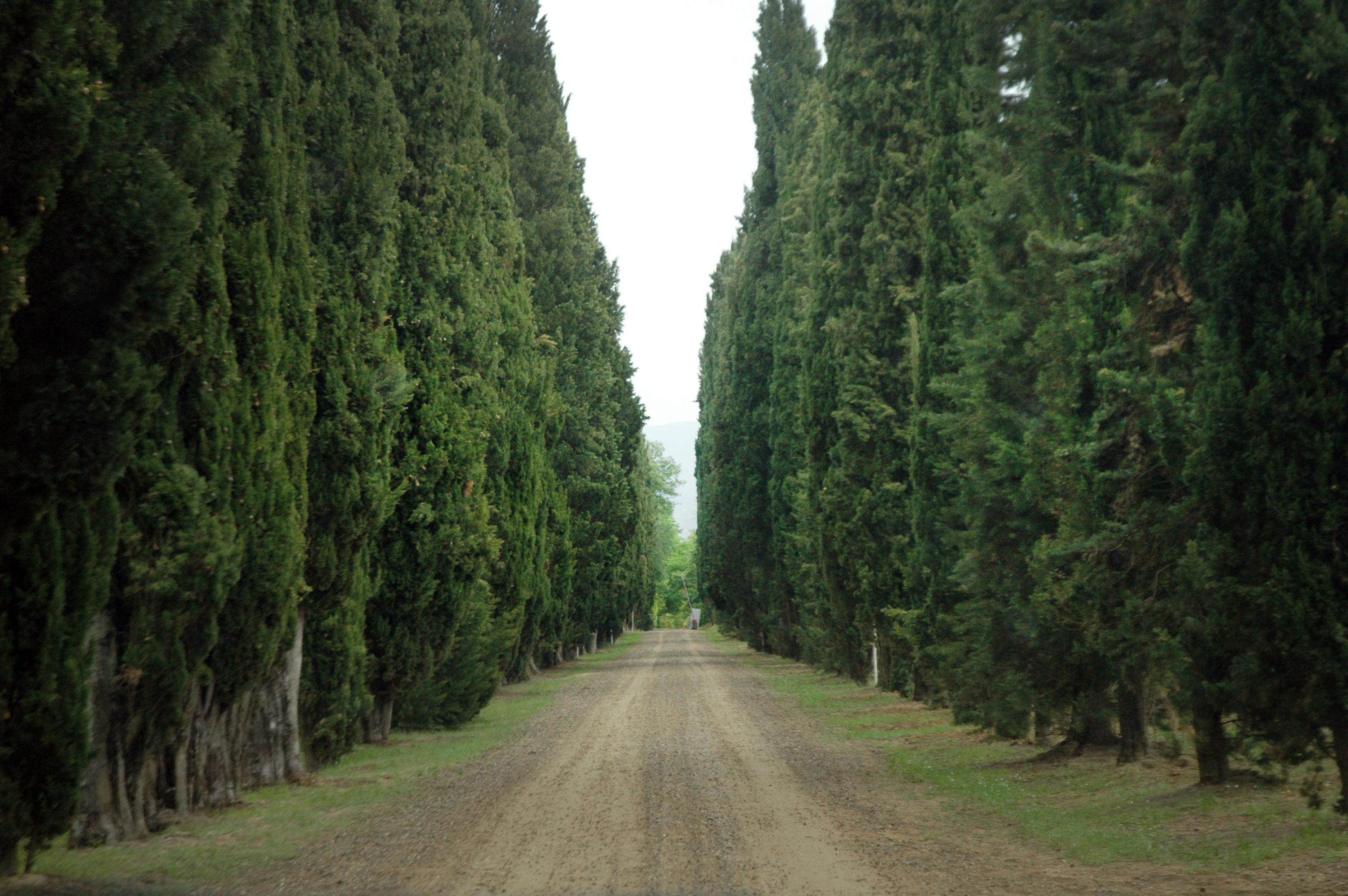 Entrance to Il Palagio in Tuscany at Saturdaysoul.com