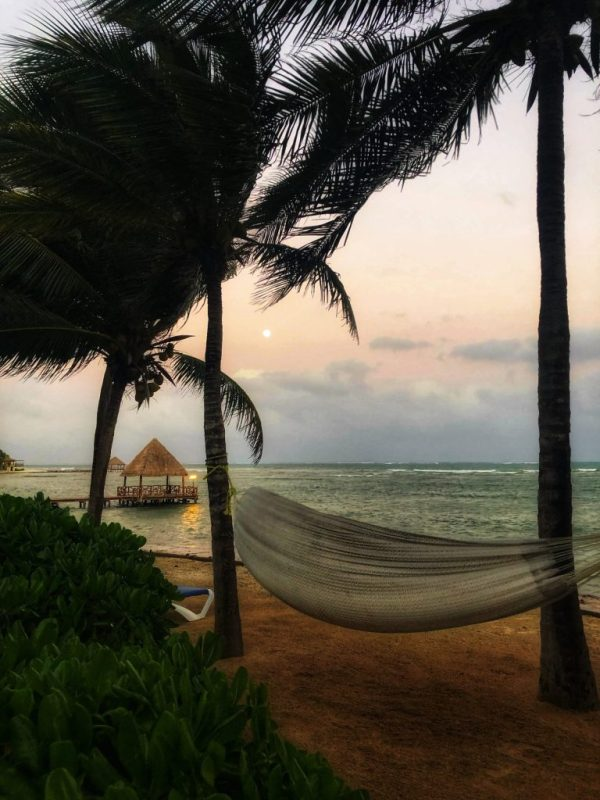 beach scene with hammock in mexico